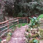 Foresta Urbana Lecce (3)