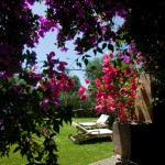 masseria-li-foggi-salentourist-case-vacanza (11)