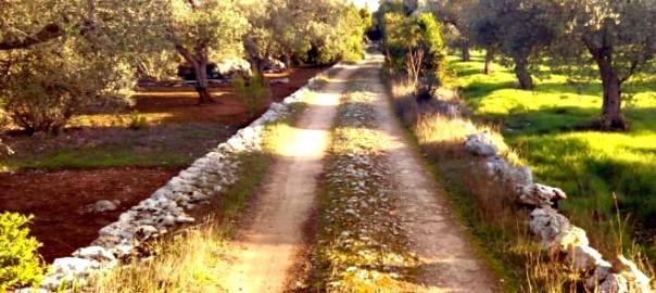 strada romana Lecce 2 bigjpg